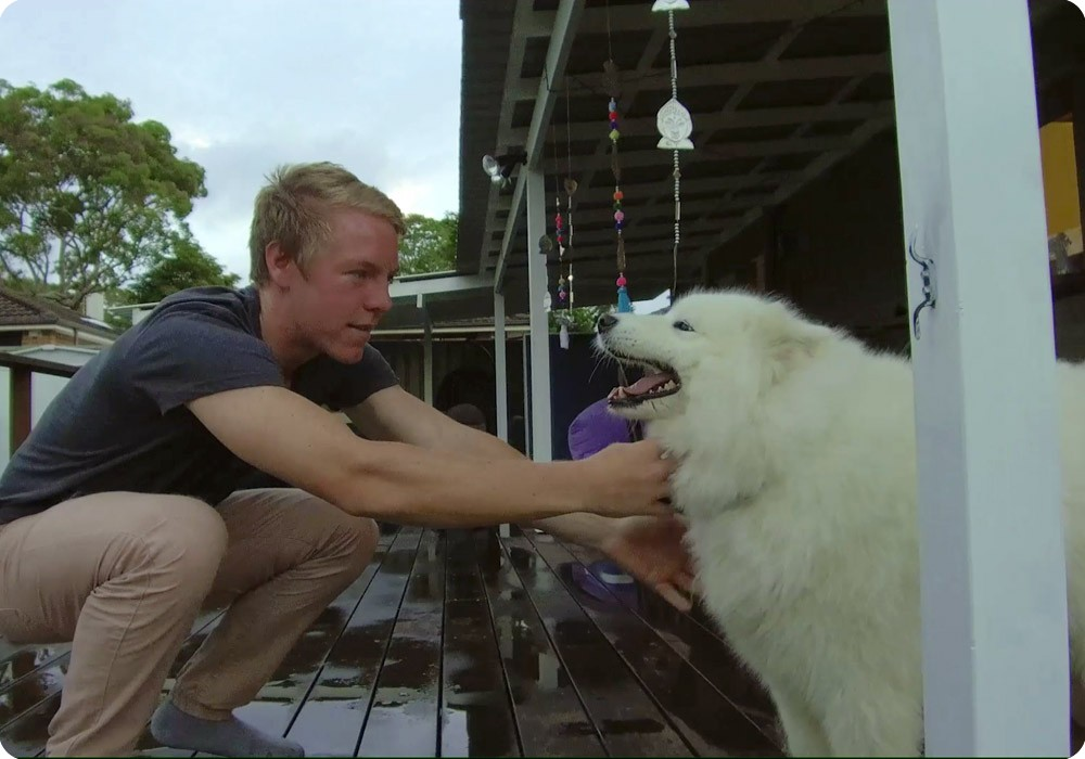 Patient Charlie patting his fluffy white Samoyed dog